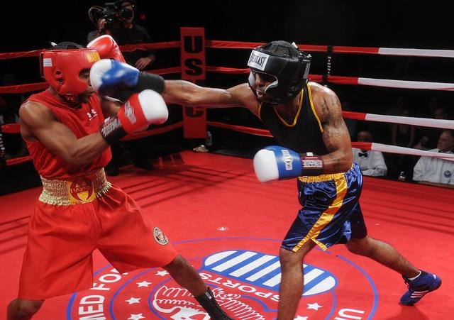 boxers-652385_640